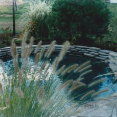 Water Features20